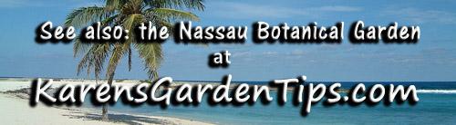 Nassau Botanical Garden pointer