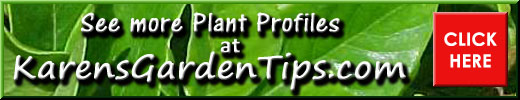Plant profiles pointer