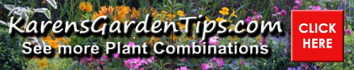 Plant combinations pointer