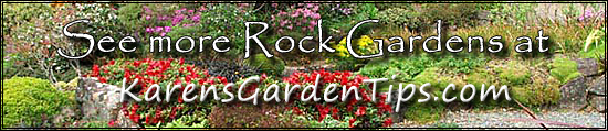 Rock Garden Pointer
