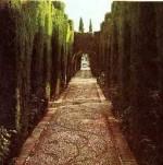Cypressus Walkway