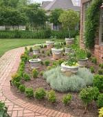 herb-garden-with-bay