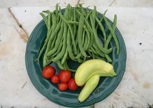 a vegetables