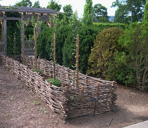 a woven fence