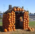 a pumpkin house