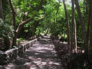 Bot G walkway 2