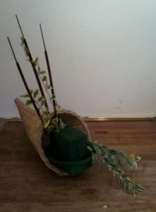 cornucopia lst greens