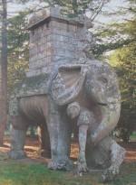 B elephnt
