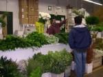 Greens store c men