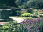 herb garden M