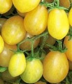 tomato yellow grape