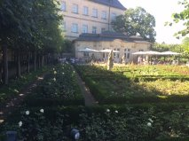 Bamberg rose garden overview