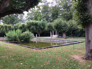 Melk pool in woods 2