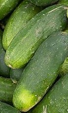 Cucumbers are offered for sale at Easter