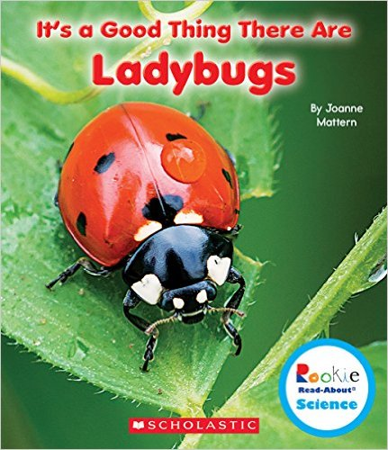 Its a Good Thing There ARe Ladybugs Mattern