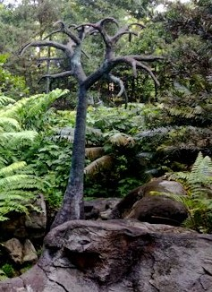 Evolution garden-fern-trees