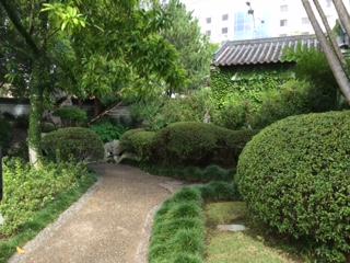 Vegetation_IMG_4646