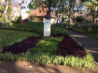 statue c variegated foliage_IMG_5745