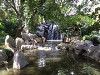 waterfall_IMG_4616