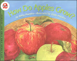 HOw do appleas grow